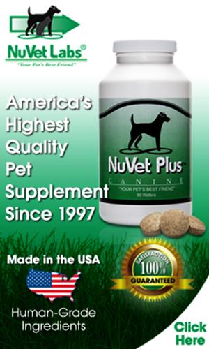 We Use NuVet Because It Works