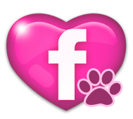 Our Facebook Profile